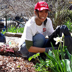 A New York Cares volunteer works in a community garden on New York Cares Day Spring.
