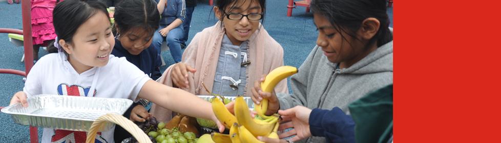 Kids picking fruit