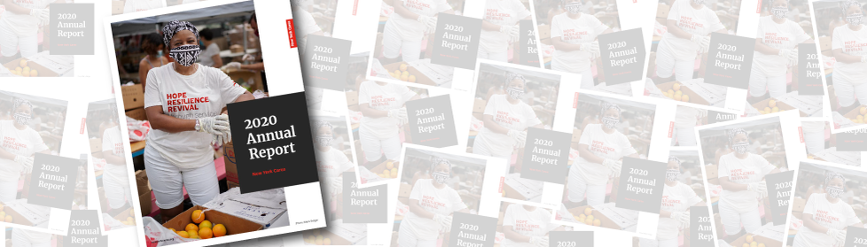 Front cover of 2020 Annual Report placed in front of a pile of reports
